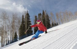 standaard dekking verzekering wintersport